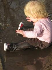 mudpuddle3