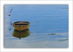 Quietud (..felicitas..) Tags: chile patagonia landscape lumix landscapes boat bravo paisaje explore fp frontpage interestingness9 bote chiloe chonchi chilo 2793 felumolina i500 explorefrontpage abigfave colorphotoaward superaplus aplusphoto brc2007 explore13feb2007 felicitasmolina