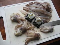 Calamares con las bolsas de tinta