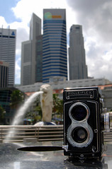 rollie with merlion (tropicalrips) Tags: rolleiflex singapore d2x merlion