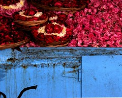 Flowers to offering (Z Eduardo...) Tags: travel flowers blue india colors muslim explore offering viagem rajasthan ajmer peopleschoice dargah impressedbeauty aplusphoto