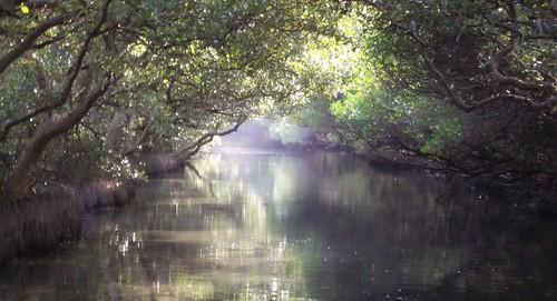Sicao Wetland