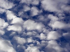 Sky with dramatic clouds (kamneed) Tags: blue light summer sky cloud white storm color nature beauty up weather horizontal warning dark outdoors photography freedom energy heaven day moody open view angle image god ominous softness deep dramatic nobody grace aerial changing simplicity cumulus backgrounds despair environment thunderstorm form climate tranquil cloudscape scenics stratosphere meteorology expressing forecasting stck