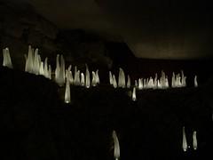 Relax room (King Kieran) Tags: king slovenia ljubljana immortal
