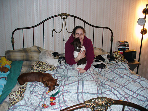2007-02-08 - Kelly & Dogs - 0004