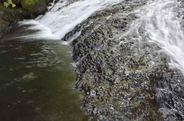 OregonStream.jpg