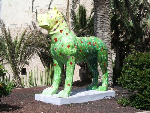 Canes en Canarias