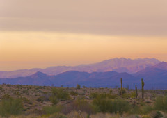 Purple Mountain's Majesty (jimhankey) Tags: sunset arizona cactus sky cloud sun mountain phoenix weather topv111 clouds cacti landscape spring purple desert cloudy scenic naturallight sunny valley vista orangesky goldensunset dramaticsky hdr beautifulclouds beautifulview sunray desertview 2007 eveninglight phoenixarizona afternoonlight phoenixaz scenicview desertmountain eerielight maricopacounty goldensky nikond200 fortmcdowell unusuallight beelinehighway glowingcloud abigfave dearflickrfriend jimhankey arizonaspring arizonaweather phoenixweather phoenixariz