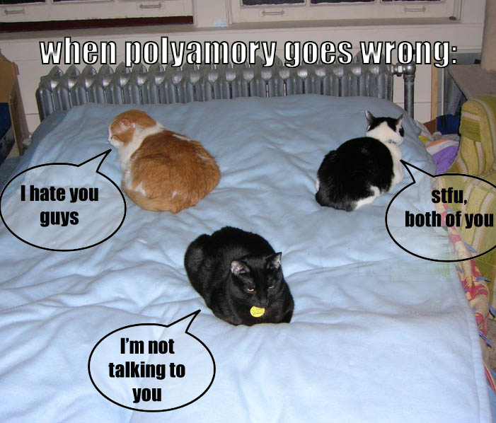 polyamorycats
