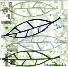 'leaves and squares' - azuregrackle on Flickr