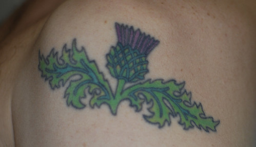 New Scottish Thistle Tattoo Tattoos untitled. 031207Arm_tat Scottish thistle