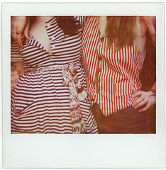 stripes & ivory - by rugosa rosa