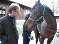 IMG_0526 (*_toffoletta_*) Tags: horses laura barros maneggio