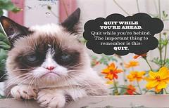 WOTM Green-Zombie (Rocky's Postcards) Tags: grumpycat demotivational postcard greenzombie wotm despair quit quiting