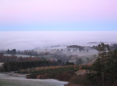 East Lothian under Freezing Fog (4722)
