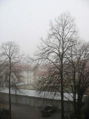 Frost and fog in Stuttgart, Christmas morning 2006