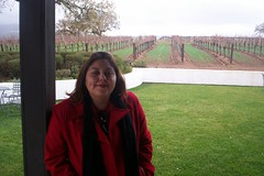 me at the vineyard