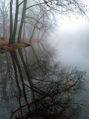 Lake Bailey in the fog