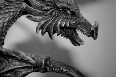 Song of Dragon (Ewciak & Leto) Tags: white black dark dragon fantasy figure legend canoneos350d mystic annemccaffrey pern v401500 v101200 v76100 v501600 v601700 v201300 castlesdreams v301400 toysfun