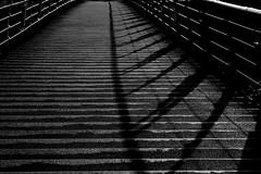 (joto25) Tags: bridge light shadow bw sunlight lines linear sr146 joto25 sgpow44 jotography jtloh