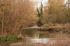River Arrow in Warwickshire (Tudor Barlow) Tags: winter england ford rivers warwickshire alcester coughton tamron1750 riverarrow