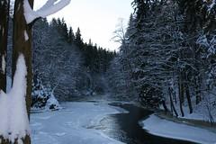 Winter (Kursiv) Tags: winter snow tree norway canon river eos kursiv interestingness225 specnature 400d canoneos400d p1f1