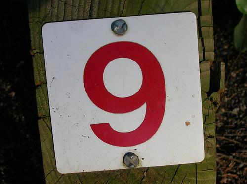 number 9, number 9