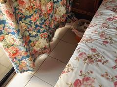 (lauratitian) Tags: hotel bed tortola bvi grapetree