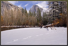 Tracks (Thi) Tags: yosemite halfdome housekeeping mercedriver yosemitewinter