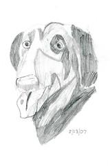 dog draw real animals