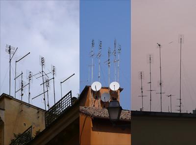 bosques de antenas