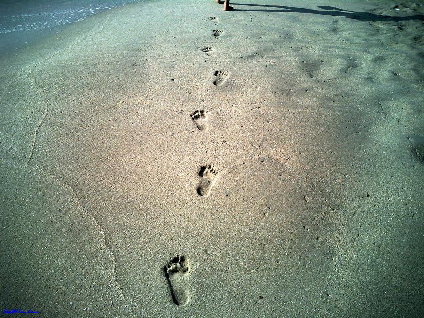 FootSteps... @ Koh Samui, Thailand