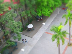 Miniature Campus