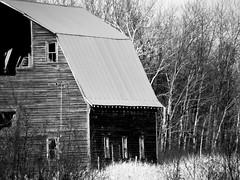 Rural Wonders