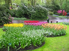 Spring Colors (If we had no winter, the spring would not be so pleasant. ) (~XANE~[AWAY]) Tags: road park flowers trees love nature colors garden bench spring colorful tulip lovely pleasant greenary