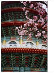 tian-yuan temple