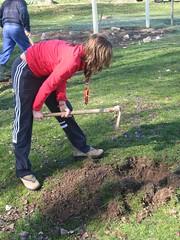 21 Plantando arbole