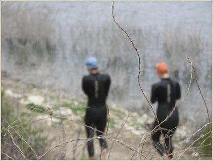 Swimmers Blur
