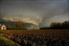 Dreiging boven  Eemshaven (TeunisHaveman) Tags: lucht sky donkerelucht dutchlight hollandslicht light licht netherlands nederland landschap landscape buiten outdoor dutchlandscape dutchsky field dutchcountry