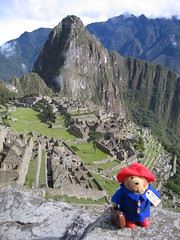Paddington Bear @ Machu Picchu (stephenk1977) Tags: peru machupicchu incatrail paddingtonbear canonpowershots50 lpbag peruvianimages