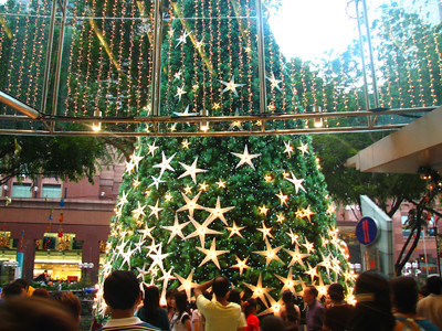 Star Tree At Paragon Mall