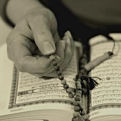 eid moubarak -   (jam-L) Tags: book dof hand islam religion mother arabic silence mata coran    adelkebir sebha eidmoubarak adeladha alqurn chapeletmusulman