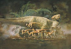Tenontosaurus and Hypsilophodonts