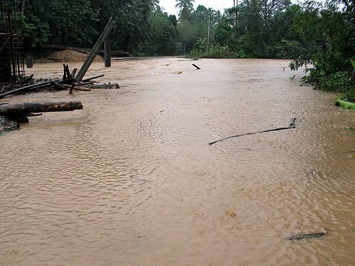 Swollen Tingkalanon River
