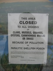No digging of carniverous whelks