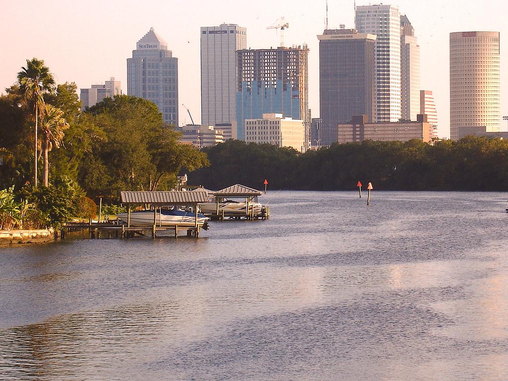 Tampa Skyline
