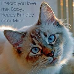 Happy Birthday (Buntekuh) Tags: explore mimbrava happybirthday mim