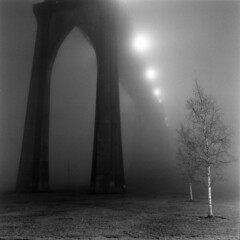 If this bridge needs a troll, pt. 2 (Zeb Andrews) Tags: fog oregon portland moody cityscapes bridges dramatic eerie nighttime pacificnorthwest fujineopan400 stjohnsbridge bluemooncamera hasselblad503cx historicbridges zebandrews zebandrewsphotography