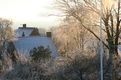 View (matisok) Tags: winter wintermorning struer