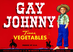 gay_johnny_00